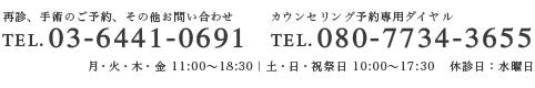 電話番号 03‐64410691