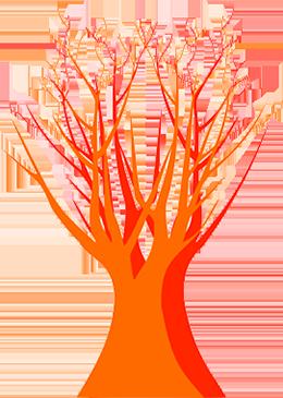 血管神経イメージ